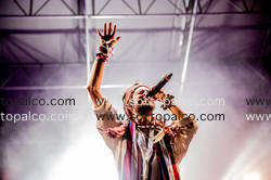 Foto concerto live Crystal Fighters TODAYS 