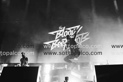 Foto concerto live THE BLOODY BEETROOTS LIVE   Home Festival  Treviso  31 agosto 2017